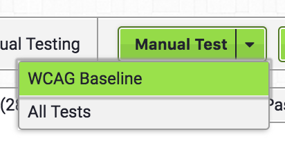 Manual Testing menu in Access Assistant