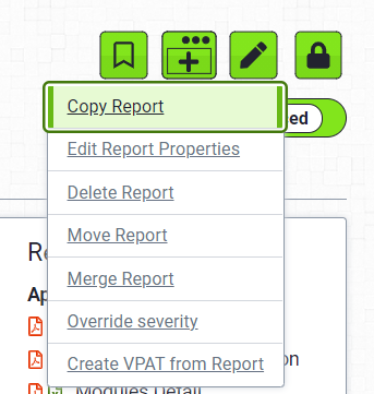 Advanced View of Edit Report Dropdown options