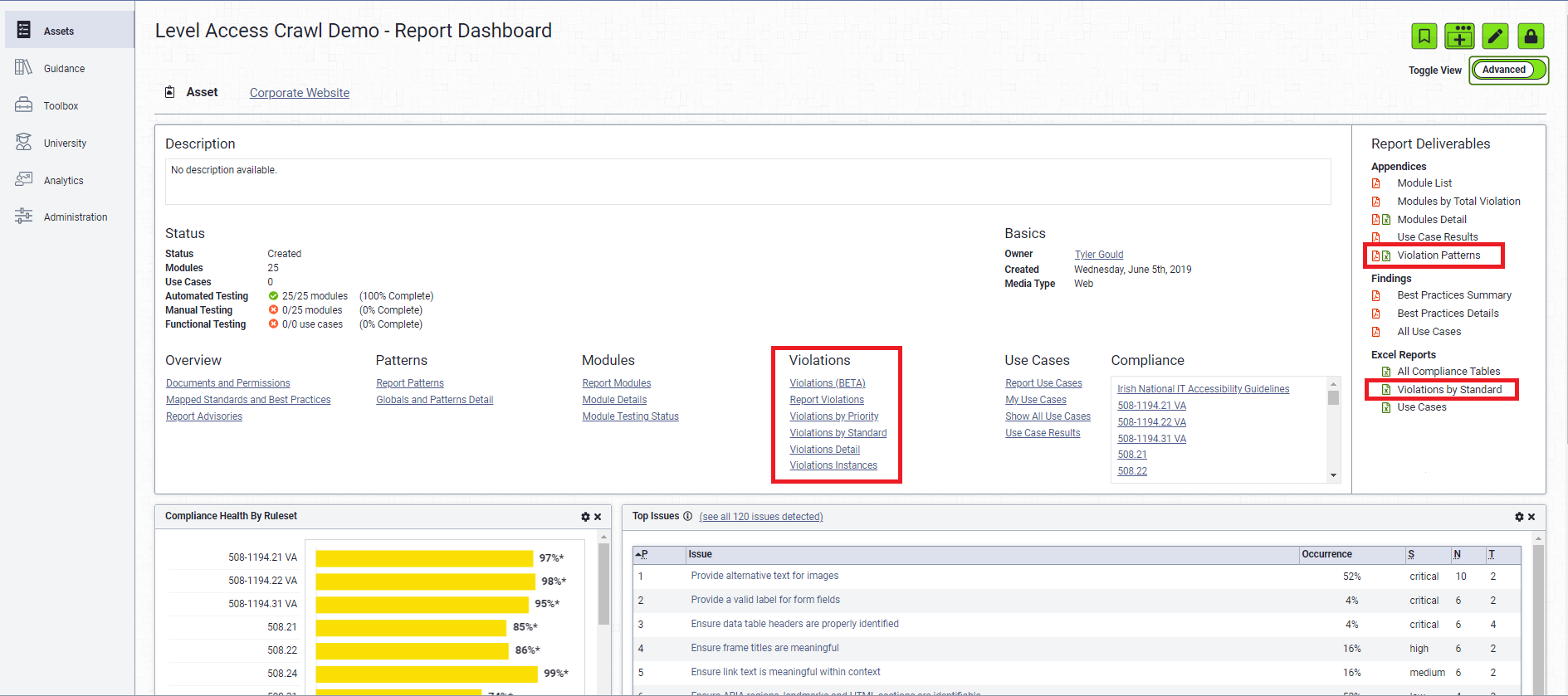 Report Advanced view with Violation Options highlighted
